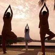 Йога - групповые занятия фото