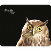 Коврик для мыши с матерчатым покрытием Dialog PM-H15 Owl, сова фото