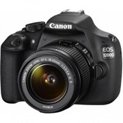 Цифровой фотоаппарат Canon EOS 1200D EF-S 18-55 DC III+ EF 50 1.8 STM (9127B131AA) фото
