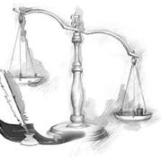 Представление интересов в судах любой инстанции, защита прав фото