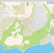 Тольтти. Настенная карта  фото