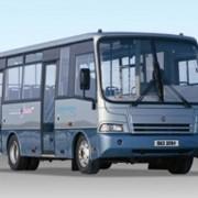 Автобус ПАЗ 3204 фото
