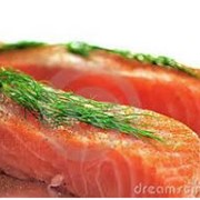 Мясо лосося фото