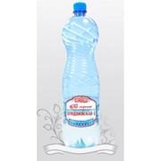 Вода минеральная лечебная Придвинская-2 фото