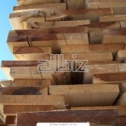 Доски необрезные хвойных пород продажа Житомирская область фото