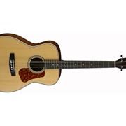 Акустическая гитара Cort L100C (NS) фото