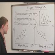 Обучение финансового брокера фото