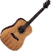 Акустическая гитара GREG BENNETT D1 фото
