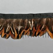 Перо-юбка из натуральных перьев 4см/48-50см 02 570824 фото