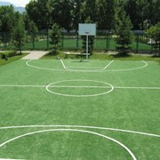Газоны для спортивных площадок фото