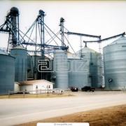 Зернохранилища. Строительство и монтаж фото