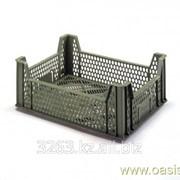Коробка Ringoplast для овощей и фруктов 400x300x157 фото