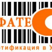 Сертификация автосервиса, сертификация услуг фото