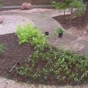Полная замена грунта в саду фото