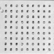 Номерки для маток, белые фото