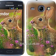 Чехол на Samsung Galaxy Core i8262 Кролик и цветы 3019c-88 фото
