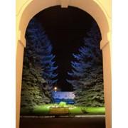 Ландшафтное декоративное освещение фото