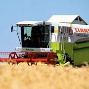 Зерноуборочный комбайн Claas Mega фото
