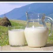 Заменители Цельного Молока ЗЦМ фото