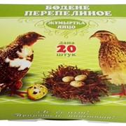 Упаковка для перепелиных яиц фото