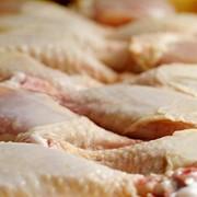 Мясо птицы от 1,66 BYN фото