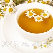 Чай ромашковый фото