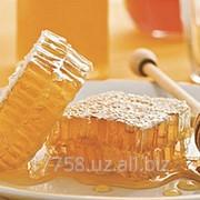 Натуральный мед фото
