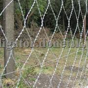 Ограждения сеточные, колючая сетка Пиранья, забор из колючей проволоки фото