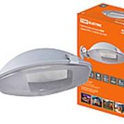 Светильник уличный ЛНУ серый, IP65, 1х100 Вт, Е27 TDM фото