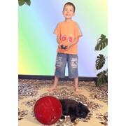 FunClean Ball - радиоуправляемая, развлекательная игрушка для всех фото