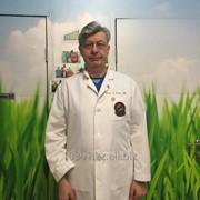 Консультация дерматолога-трихолога фото