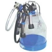 Ведерный доильный аппарат ML/SEN/I/P30 фото