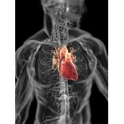 Отделение хирургического лечения сложных нарушений ритма сердца и электрокардиостимуляции фото