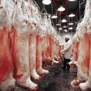 Продукты переработки мяса фото