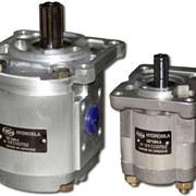 """Насосы шестеренные новой конструкции, серии """"N"""", GP10N-4 и GP32N-4. С присоединительными размерами по стандарту ГСТУ,также по стандартам DIN и SAE. фото"""