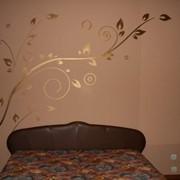 Розпись стен фото