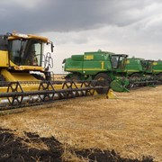 Услуги по уборке кукурузы фото