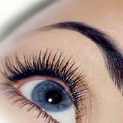 Покраска ресниц и бровей, коррекция бровей, услуги косметолога, косметический салон, косметические услуги фото