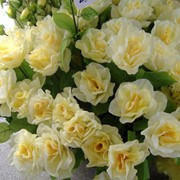 Искусственный цветок Роза фото