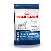 Maxi Junior Active Royal Canin корм для щенков, До 15 месяцев, Пакет, 4,0кг фото