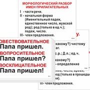 Опорные таблицы по русскому языку - 56 шт, ламинир фото