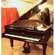 Настройка рояля Украина фото