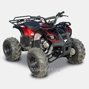 Квадроцикл Spark LZ110-4 фото
