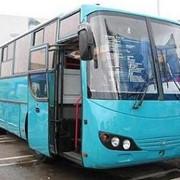 МАрЗ-42191, междугородный автобус фото