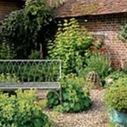 Благоустройство и озеленение, ландшафтный дизайн фото