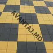 Тротуарная плитка, арт. 33 фото