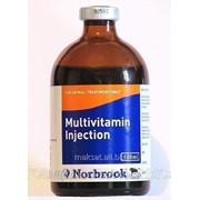 Мультивитамин Норбрук 100 мл фл фото