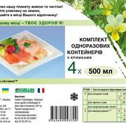 Набор контейнеров (светло-салатовые или прозрачные) с крышками (кристально-прозрачные), 500 мл., 4 шт фото