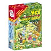 Книги дитячі Дивовижні пригоди в лісовій школі Всеволод Нестайко фото