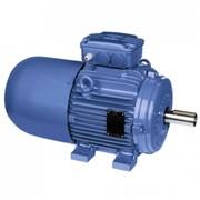 Электродвигатели IP55 – Алюминиевый корпус - с тормозом фото